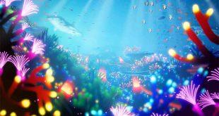 En Koral el protagonista no es el jugador, sino el mar.