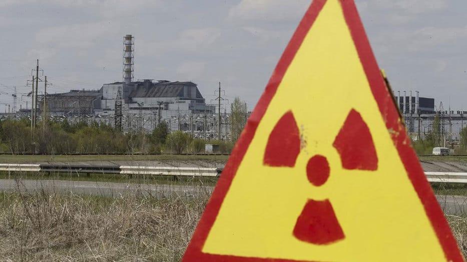 Años después del accidente de la planta nuclear de Chernóbil, los científicos comprueban que la flora, a diferencia de la fauna, cuenta con un desarrollo más flexible y orgánico.