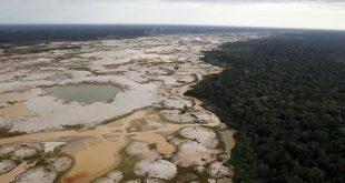 Los recursos requeridos para la preservación del medio ambiente son finitos.