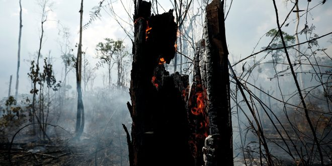 Amazonía un inmenso desafío para la humanidad