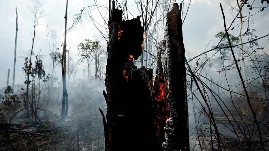 Cualquier cosa que pueda ser escrita queda corta ante los hechos. Lo que sucede en la Amazonía no solo es un problema ambiental. Se trata de un gran reto sociocultural, político, económico y humano