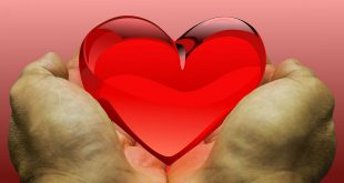 La población española es la principal donante de órganos para asistir a futuros trasplantados, en el mundo