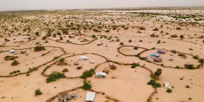 Restauración del suelo, una de las soluciones más baratas para enfrentar la global crisis climática