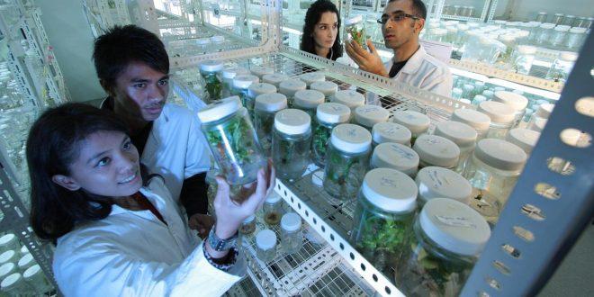 La ciencia es no solo conocimiento, sino también paz y desarrollo