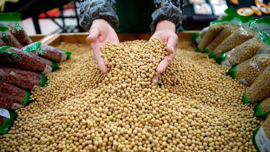 China ha dado luz verde a la soja transgénica proveniente de EEUU