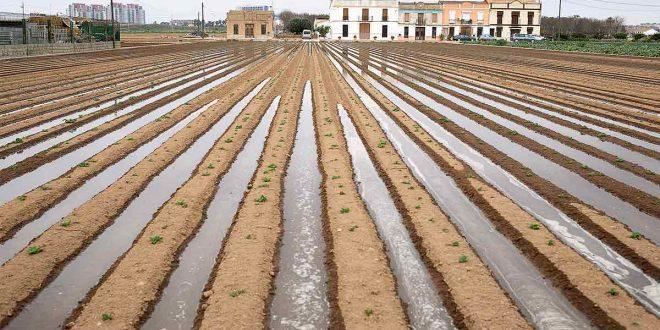 L'Horta-de-Valencia