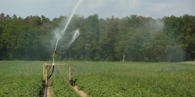 Europa quiere garantizar el riego agrícola con la reutilización de las aguas residuales tratadas