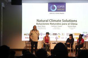 Soluciones naturales para frenar el cambio climático