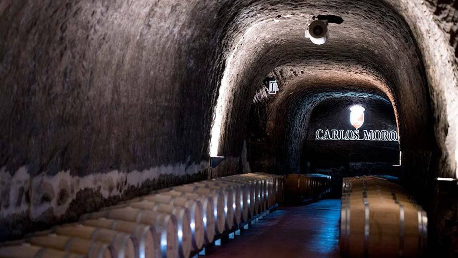 Adentrarse en el mundo vitivinícola 2