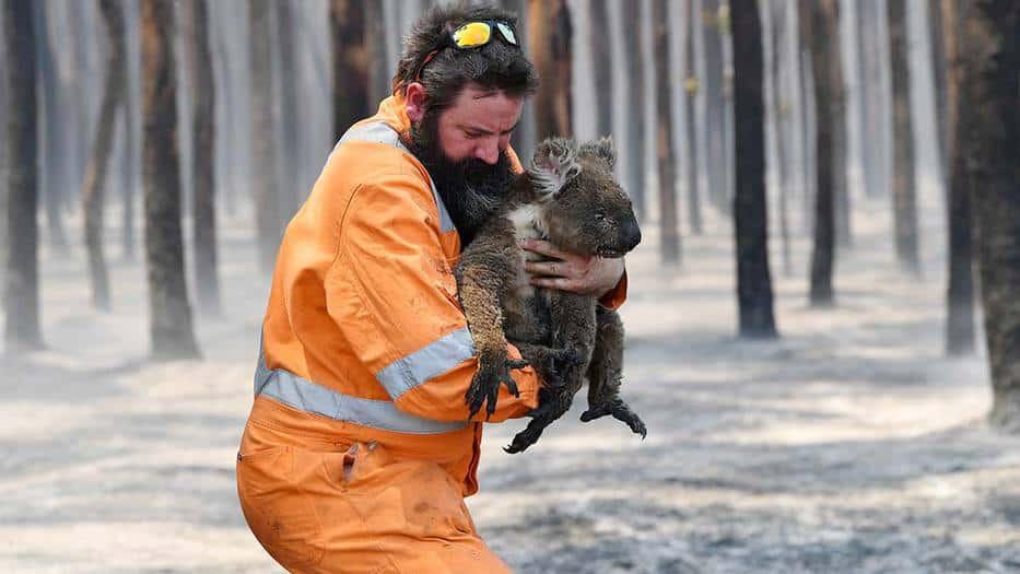 Un rescatista de vida salvaje, Simon Adamczyk, con un koala en un bosque en llamas cerca del cabo Borda en la isla Canguro, al suroeste de Adelaida, Australia. 7 de enero de 2020.