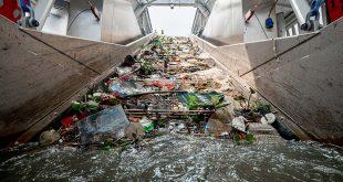 Plástico marino recolectado