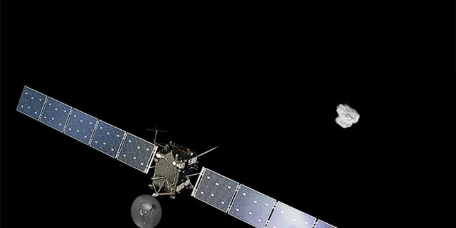Rosetta cometa