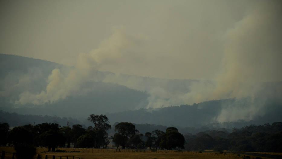 humo australia
