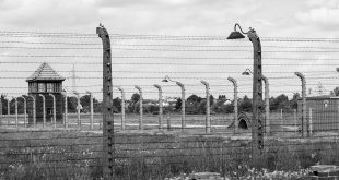 campo de concentración Auschwitz.