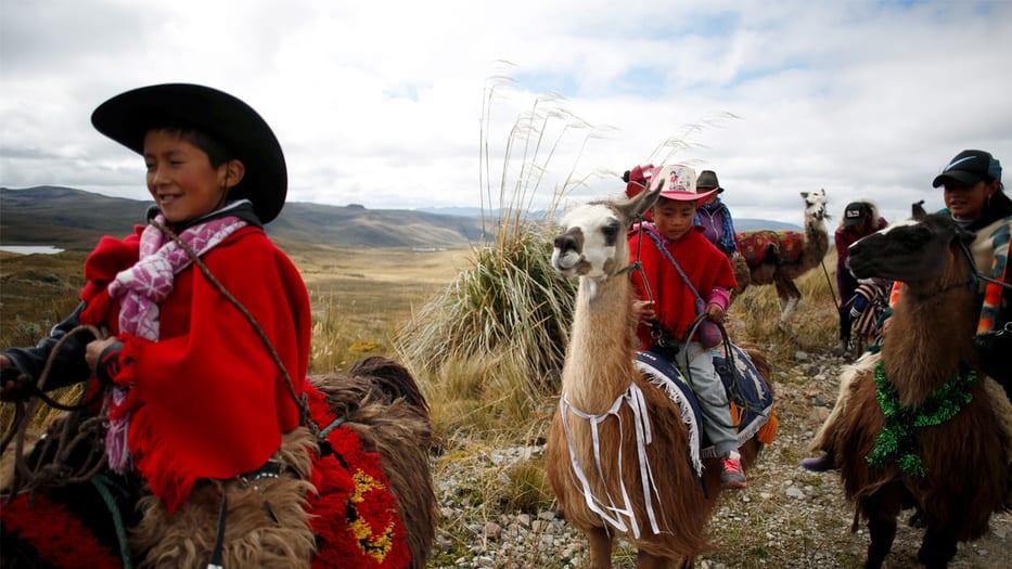 Carrera de llamas por la conservación de los humedales en Ecuador
