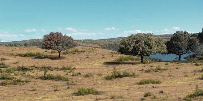 Restauración de suelos y ecosistemas