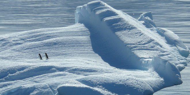 Calentamiento global lleva a un derretimiento continuo del hielo antártico