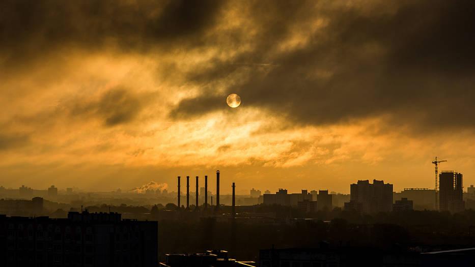 La actividad humana atenta contra el ambiente