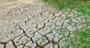El calentamiento global afecta la salud, la comida, el hogar.../ Pixabay