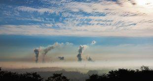 Delitos ambientales en Europa
