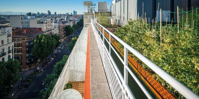 La sostenibilidad ya no es suficiente, necesitamos culturas regenerativas