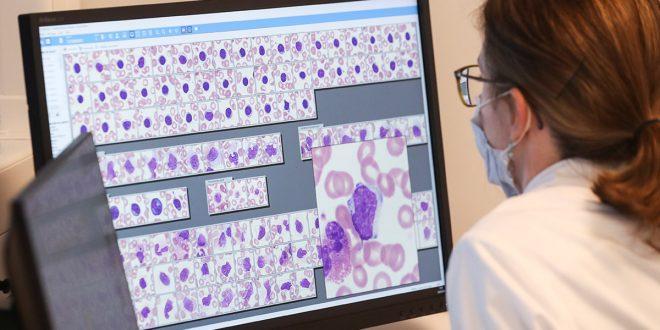 No cesa la búsqueda de un tratamiento eficaz contra el coronavirus