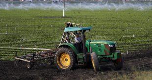 Gobierno favorece contratación temporal de trabajadores en sector agrario