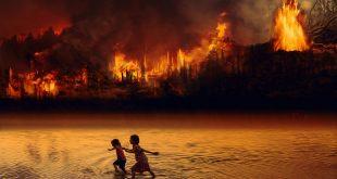 Bolivia pide cuarentena en los bosques para no revivir incendios de 2019