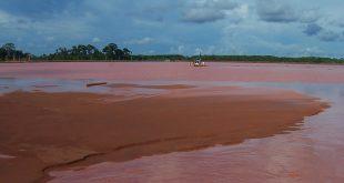 Amazonía brasileña minería ilegal