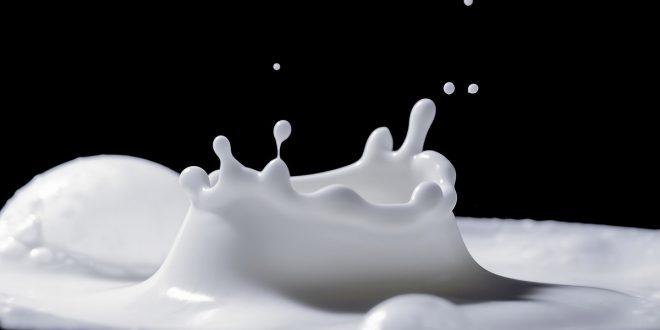 Los productores británicos botan la leche fresca por falta de compradores