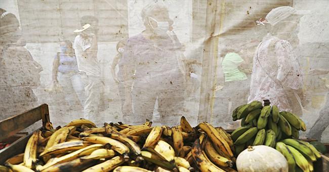 cover-web-venezuela-covid19-crisis-full