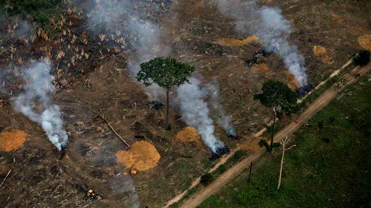 Administración-de-Jair-Bolsonaro_1