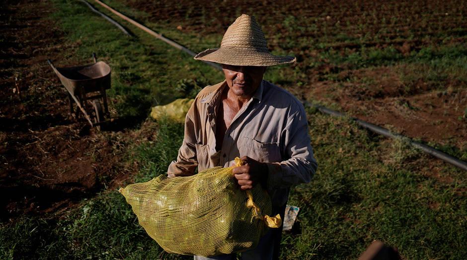 Denuncias por jornadas de sol a sol y baja paga se han presentado en el pasado entre los trabajadores del campo
