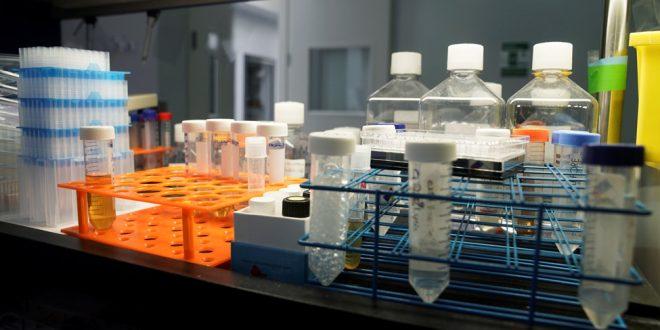 MSD anuncia múltiples esfuerzos científicos para combatir a la COVID-19
