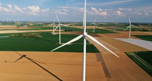 reconstrucción económica verde