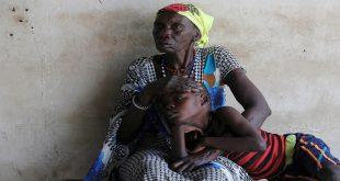 cover web-Transmisión-de-la-malaria_