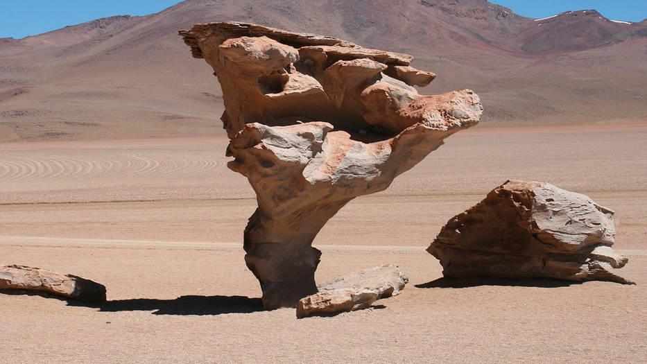 microorganismos sobreviven extrayendo agua de rocas