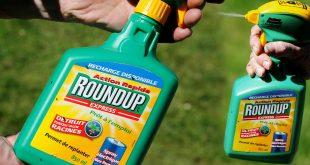 Como en herbicidas de otras marcas, el glifosato es uno de los ingredientes activos de Roundup. Monsanto lo introdujo al mercado en 1974 y tuvo la patente hasta el año 2000. A partir de entonces, el producto pasó a manos de otros fabricantes.