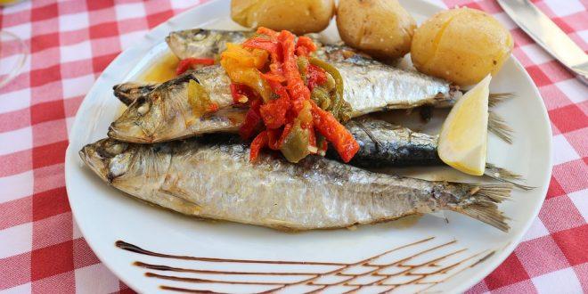 Microplásticos y parásitos en sardinas y anchoas