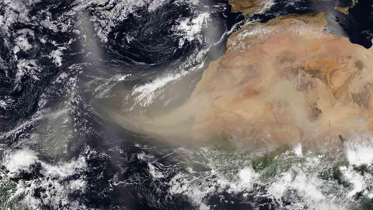 Polvo-del-Sahara_1