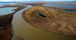 Derrame de combustible en el Ártico amenaza a la vida silvestre
