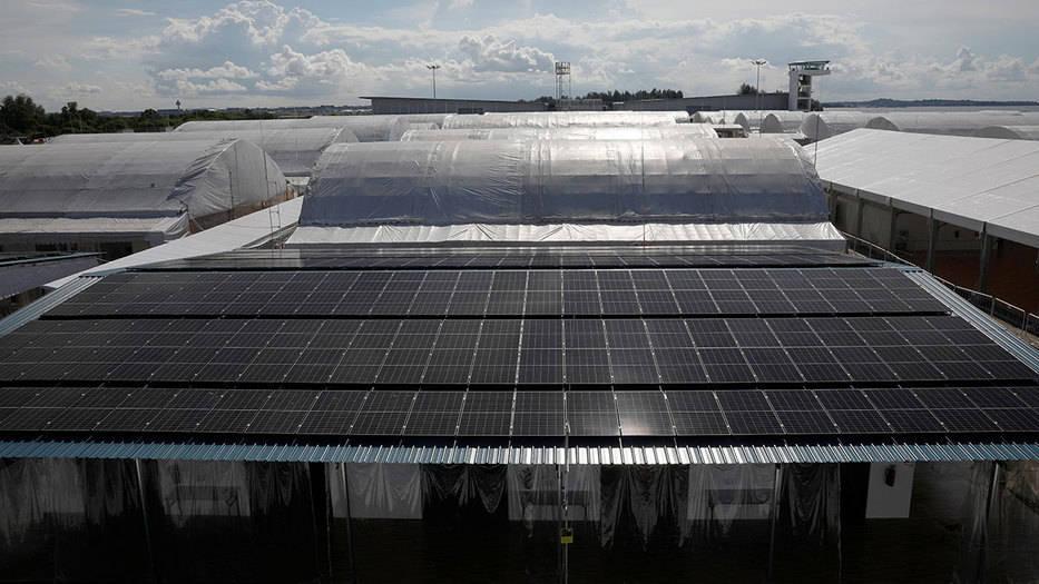 Caída en los costes de las renovables ayudará a la recuperación global