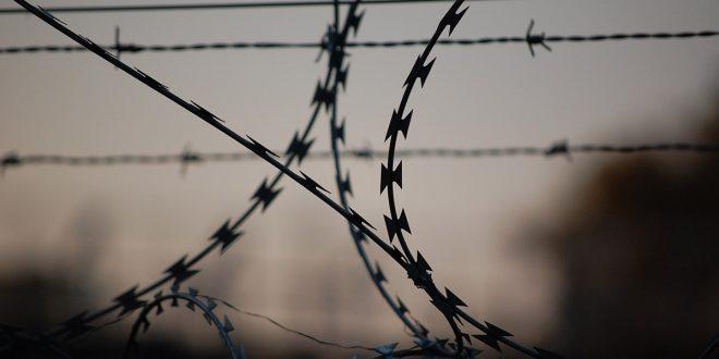 liberación de presos covid-19