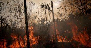 Se observa una zona en llamas de la selva amazónica mientras los taladores y agricultores la talan en Porto Velho