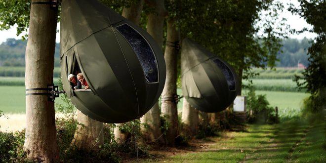 Otra forma de turismo: belgas veranean en los árboles
