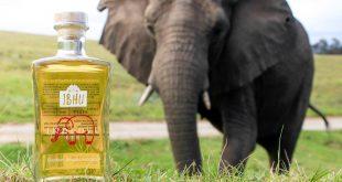 Ginebra de estiércol de elefante