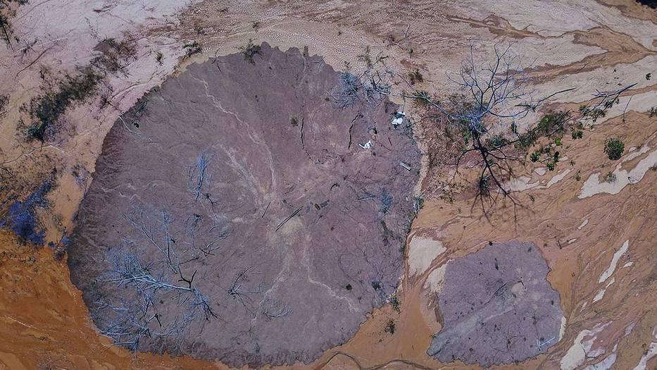 Gobierno de Brasil despidió a Lubia Vinhas, luego de revelar los datos de deforestación en junio