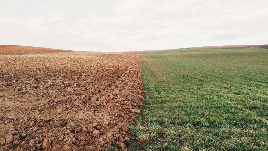 La conservación del suelo