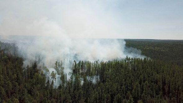 Ola de calor en Siberia alarma a los científicos