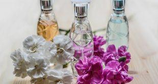 Inteligencia Articial perfume